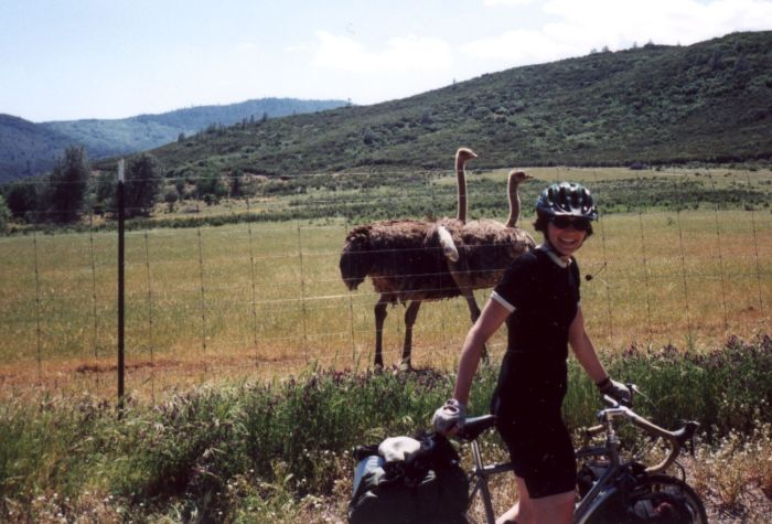 amy_and_ostriches.jpg
