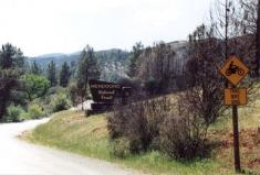 mendocino_forest_sign.jpg